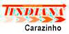INDIANA LOGISTICA E TRANSPORTES  - CARAZINHO